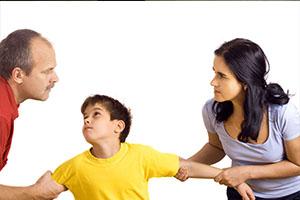child custody national detective