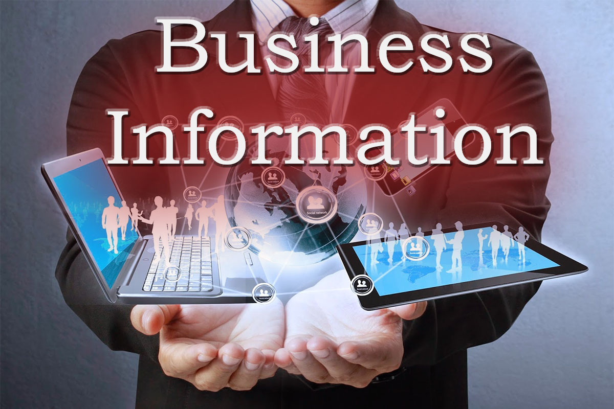 Business Information Large