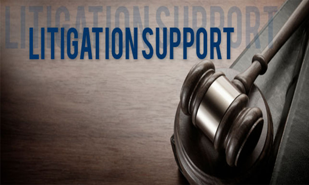 Litigation Support Large